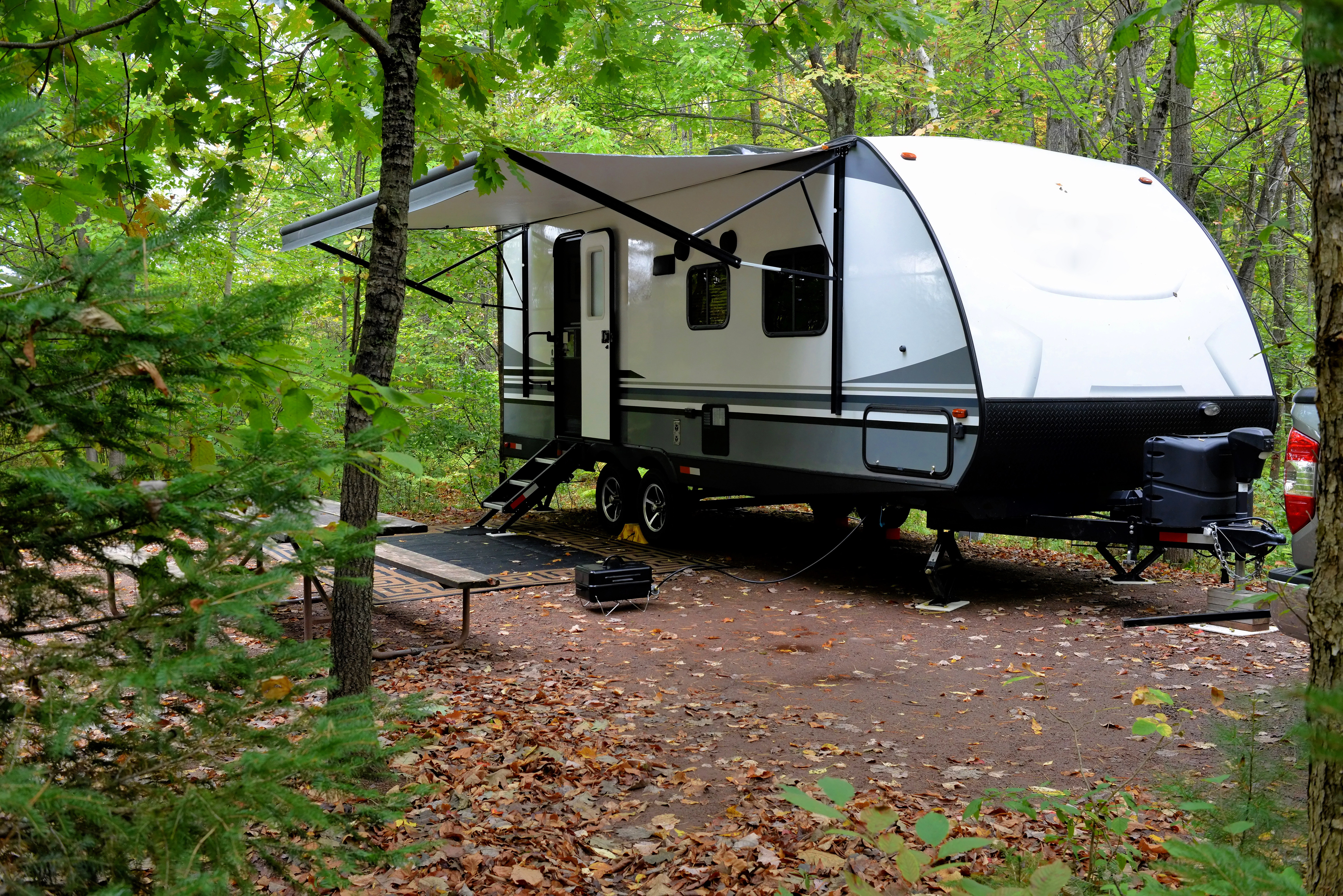 wooded-camping-wifi